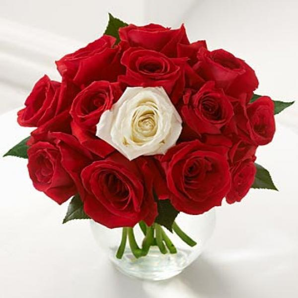 11 Red Roses and 1 White Rose